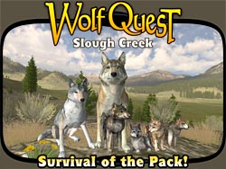 Survival of the Pack!