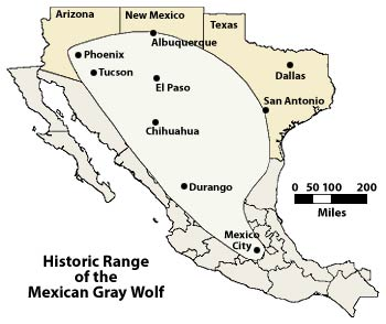 Historic Range of the Mexican Gray Wolf
