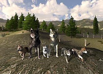 Wolfquest the pack ccuart Choice Image